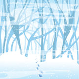 Soft winter background Royalty Free Stock Image