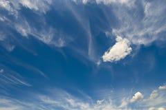 Soft wispy clouds over the blue sky. Soft feather clouds over the blue sky Royalty Free Stock Image