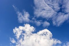 Soft wispy clouds over the blue sky. Soft feather clouds over the blue sky royalty free stock photo