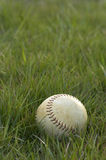 Softball. In grass vertical Royalty Free Stock Photos