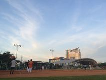 softball Stock Photography