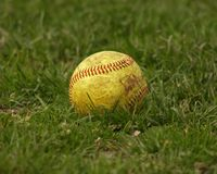 Softball / Ball Stock Photography