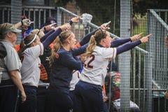 Softball 2014 di campionato del mondo Fotografia Stock Libera da Diritti