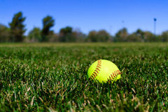 Softball at a Field in California Royalty Free Stock Image