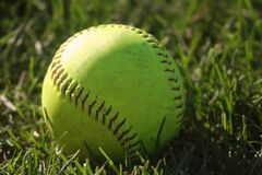 Softball in the Grass Close-Up