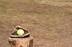 Softball im Handschuh Stockbilder