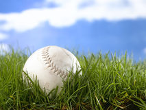 Softball. Nestling in long grass Royalty Free Stock Images