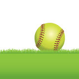 A Softball Sitting on Grass Illustration Royalty Free Stock Photo