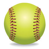 Softball  on White Illustration Stock Photos