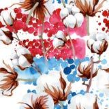 Softe白色棉花 花卉植物的花 无缝的背景模式 免版税库存照片