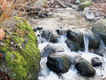 A creek rambles down some rocks as a bright green moss covered boulder frames the waters. The softly illuminated forest creek cascades in several steps down some Stock Photos