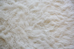 The softly wool white carpet. For background royalty free stock images