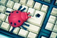 Software bug Stock Photos