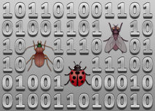 Software bugs Royalty Free Stock Photography