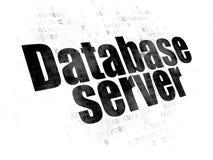 Software concept: Database Server on Digital background Royalty Free Stock Images