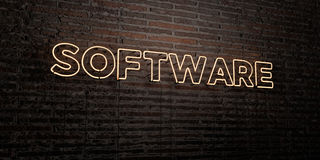 SOFTWARE -Realistic Neon Sign on Brick Wall background - 3D rendered royalty free stock image Royalty Free Stock Photos