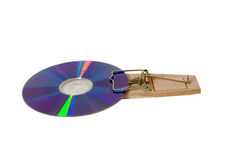 Software trap. Purple DVD disk caught in a mouse trap used to catch small rodents stock image