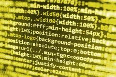 Softwareentwicklerarbeitsplatzschirm Lizenzfreie Stockfotografie