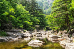 Sogeumgang creek in Odaesan NP Stock Photography