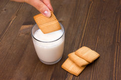 Soggy biscuit. Biscuit soaked in milk on wooden tableSoggy biscuit stock photography