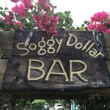 Soggy Dollar Bar Stock Image