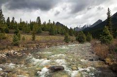 Soglie su un fiume della montagna Fotografie Stock Libere da Diritti