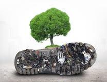 Sogliola della scarpa con sporcizia ed immondizia immagine stock