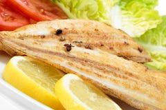 Sogliola e verdure di cuneo arrostita Solo pesce spagnolo Fotografia Stock Libera da Diritti