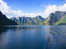 Sogne fjord arkivfoton