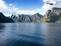 Sogne fjord Royalty Free Stock Images