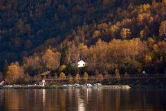 Pier,Sognefjord. The fall of the fjord,Golden yellow, pier Stock Images