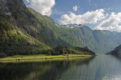 Sognefjord Lizenzfreies Stockbild