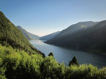 Sognefjord. Blue sky meet green forest and calm water. stock photography