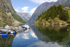 Sognefjord, Norway. Royalty Free Stock Photos