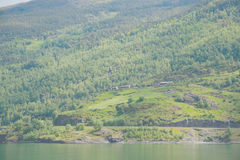 Sognefjord Stock Image