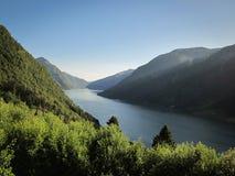 Sognefjord Treffengrünwald des blauen Himmels und ruhiges Wasser stockfotografie