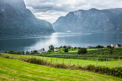 Sognefjord view on a cloudy day, Norway Royalty Free Stock Photography