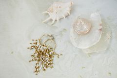 Sogni circa il mare Coperture, madreperla, fondo leggero fotografia stock