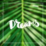 Sogni motivazionali del fondo di citazione ispiratrice Fotografia Stock