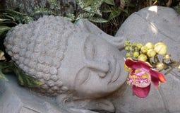 Sogno del Buddha Fotografie Stock Libere da Diritti
