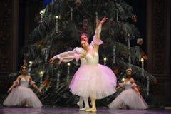 Sogno dolce della caramella il secondo regno della caramella del campo di atto secondo - le schiaccianoci di balletto Immagine Stock Libera da Diritti
