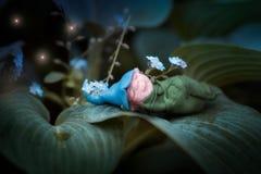 Sogno dolce sulla foglia Fotografie Stock