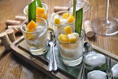 Sago Mango glutinous. Sogo Mango glutinous rice coconut pudding Stock Photos