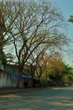 Soi wat kamphang rama2曼谷泰国 免版税库存照片