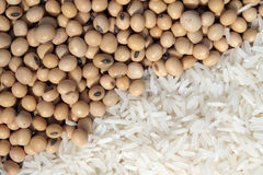 Soia e riso bianco Fotografia Stock