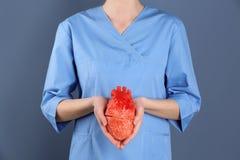 Soignez tenir le modèle du coeur sur le fond de couleur Photographie stock libre de droits