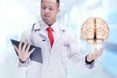 Soignez tenir les organes humains et le comprimé dans un hôpital De haute résolution Images stock