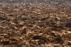 Soil. Prepairing soil before seedtime in countryside Royalty Free Stock Photos