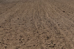 Soil. Cultivated soil. may be used as background Stock Images