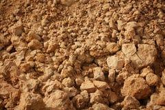Soil Royalty Free Stock Image